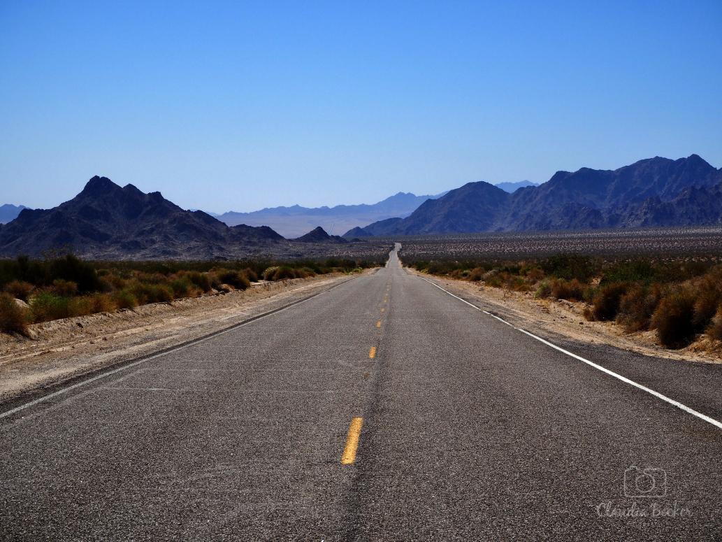 USA-long-road